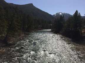Gallatin-river-080115