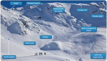 MSU researchers seek answers to what drives risk-taking in avalanche terrain
