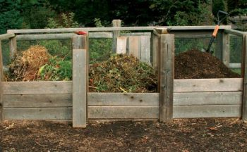 Composting 101 – give back to the soil!